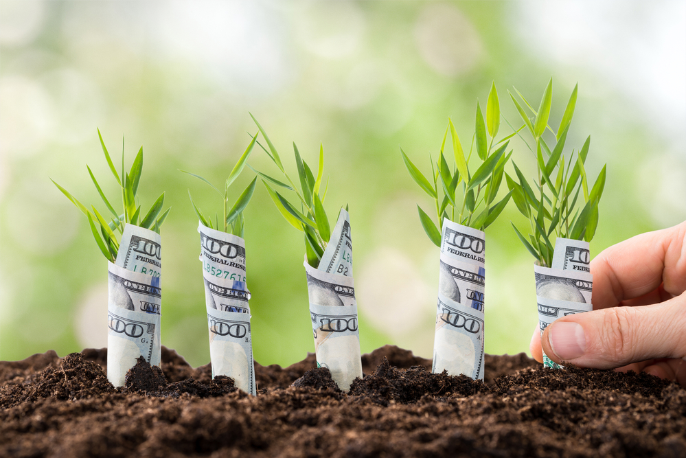 3 Ways To Develop A Marketing Budget For Your Small Business
